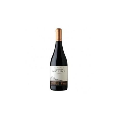 Vino Castillo de Molina Pinot Noir 0.75 Lts