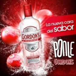 Vodka Gondon's Cranberry 0.70 Lts